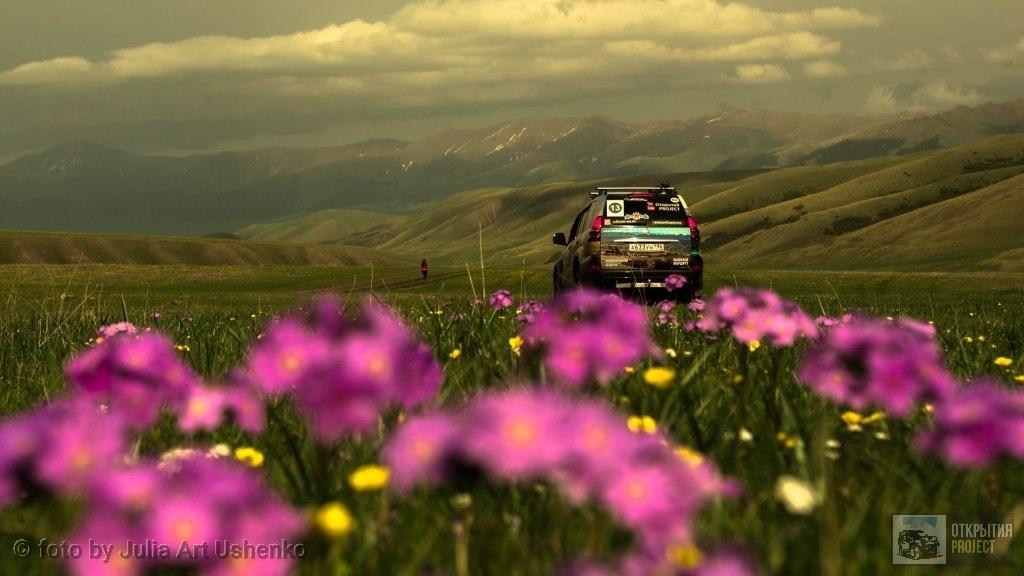 Плато Асы весна май