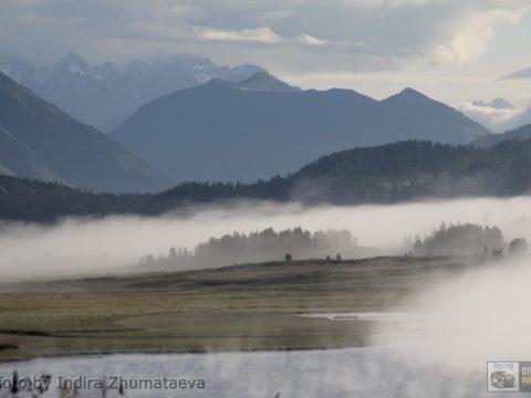 Туманный Алтай
