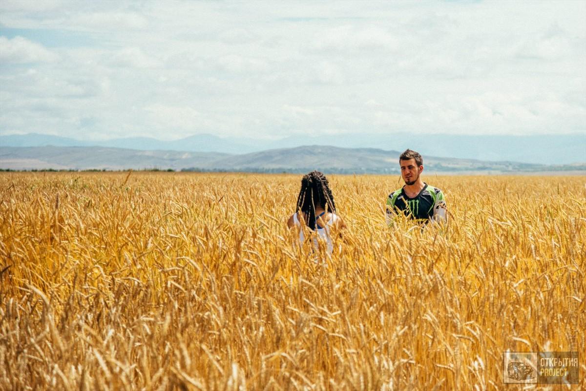 Пшеничные поля в Киргизии