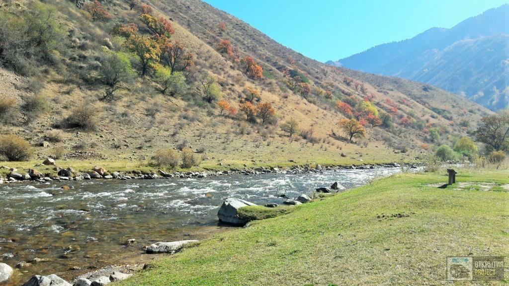 Река Тургень
