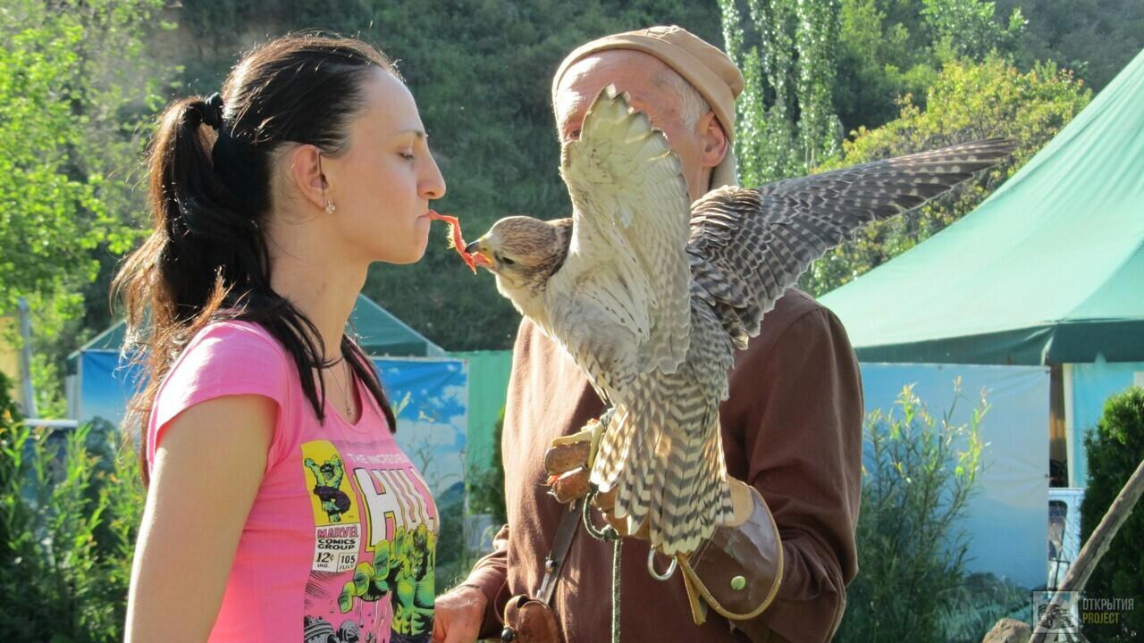 Шоу ловчих птиц в питомнике Сункар