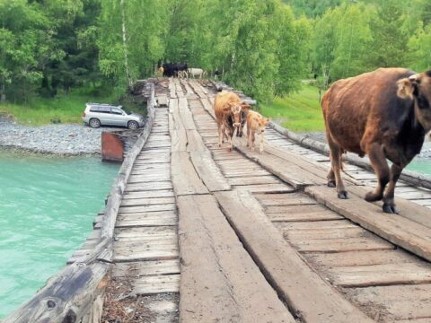 Мост через Белую Берель, ВКО