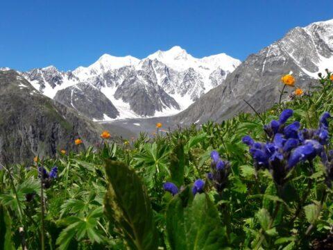 Казахстанский Алтай. Треккинг у подножия Белухи.